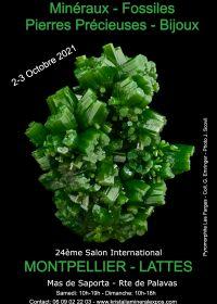 24th international fossil minerals jewelry fair