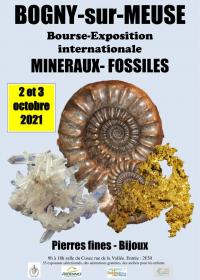 Fossil Minerals International Exhibition Fellowship
