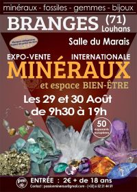 First exhibition exhibition sale of Minerals from Branges