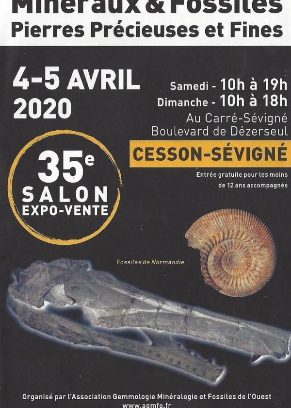 35th Fossil Minerals show