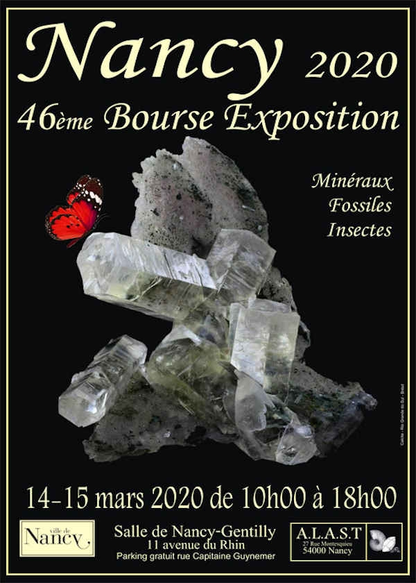 46th stock exchange exhibition of fossil minerals and insects