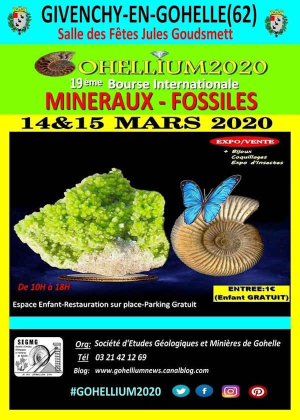 19th International Fossil Minerals Gohellium 2020 Exchange