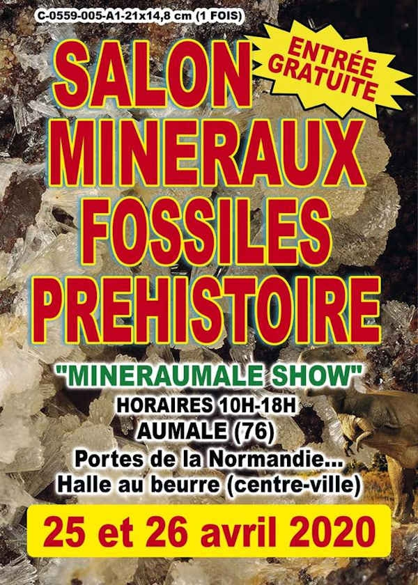 5th grant Prehistoric Minerals and Fossils Exhibition