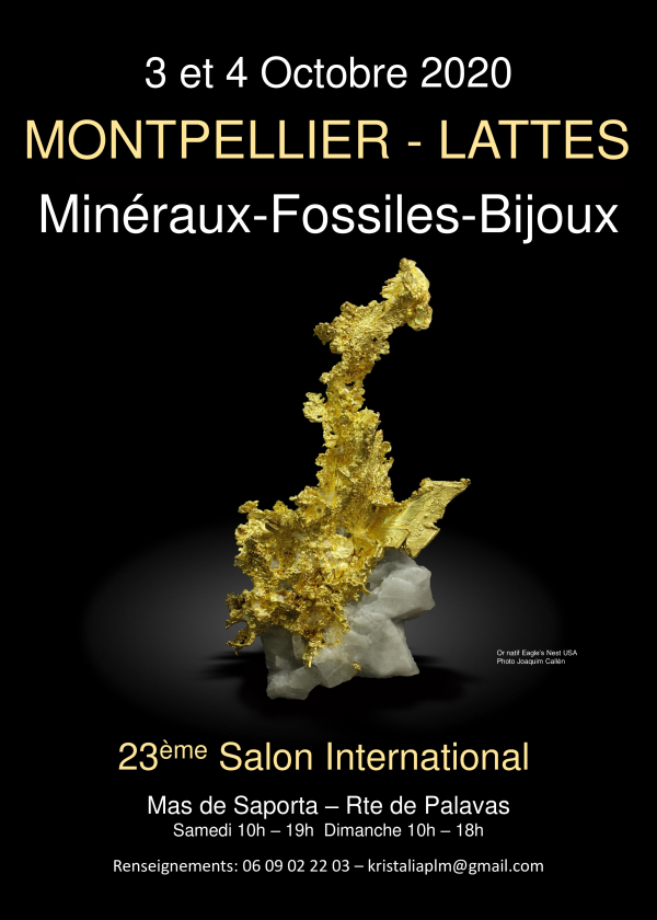 International Exchange Minerals Fossils cut stones Lattes Montpellier