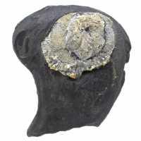 Pyrite flower on ganges